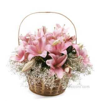 Flower Basket 24