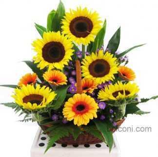 Flower Basket 12