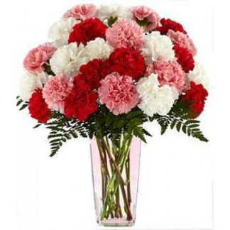 Carnation with Flower Vase