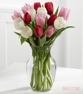17 324x365 - For Tulip's Lover - valentines-day-special, tropica-flowers, happy-birthday, hand-bouquets, exclusive-designs, european-designs, anniversary
