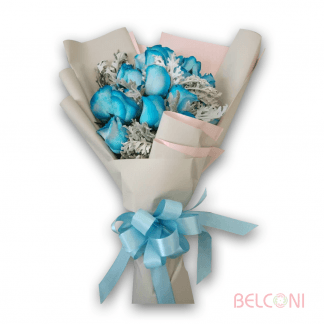11 324x324 - Nice - valentines-day-special, tropica-flowers, rose-hand-bouquets, occasions, new-born-baby, korean-design, happy-birthday, hand-bouquets, european-designs, anniversary